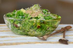 """Zelena salata"" - spanak, rukola, magdanoz, avokado, kulnove ..."